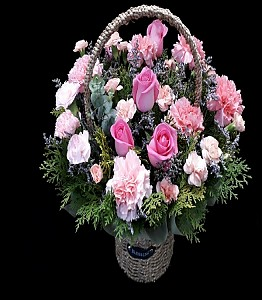핑크 카네이션 꽃바구니
